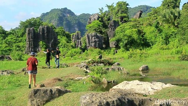 Berkat kegigihan warga hal itu tak terjadi karena ingin menjaga lingkungannya. Objek Rammang-rammang akhirnya kembali dikuasai dan dijadikan spot wisata (Moehammad Bakrie/detikcom)
