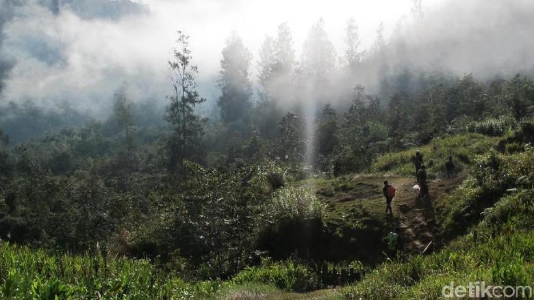 Ugimba, desa di pedalaman Papua yang tanpa listrik (Afif Farhan/detikcom)