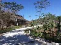 Perjalanan menuju Gua Gilap (Pradito Rida Pertana/detikcom)