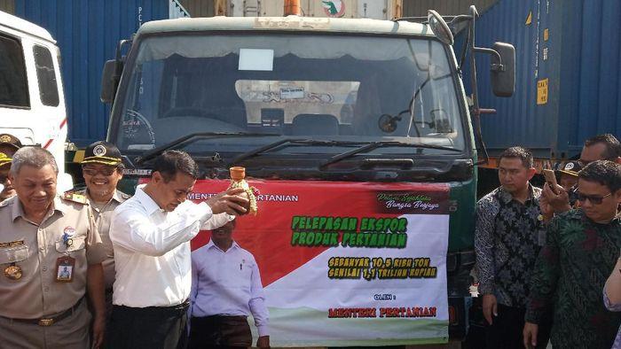 Foto: Akfa Nasrulhaq/Detik.com