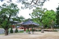 Wisatawan juga diperbolehkan kemping di area yang disediakan. Ada lebih dari 200 pohon zelkova yang berumur puluhan tahun untuk menyejukkan suasana. (Yeoju.go.kr)