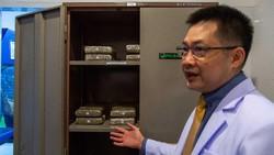 Thailand jadi negara pertama di Asia Tenggara yang legalkan ganja untuk medis dan iptek. Laboratorium ganja legal pertama pun dibangun di sana. Kita intip yuk!