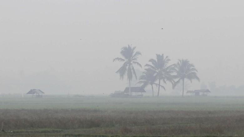 Pesawat dari Palembang Batal Mendarat di Jambi Gara-gara Kabut Asap