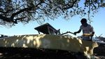 Melihat Kehidupan Nelayan Tanjung Luar Lombok