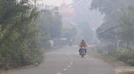Kapolri: Penyebab Karhutla 90% Ulah Manusia