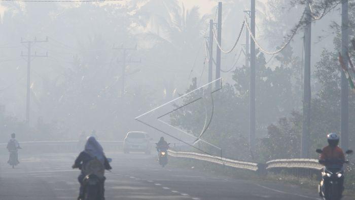 Kabut asap Desa Suak Timah, Kecamatan Samatiga, Aceh Barat, Aceh, Rabu (7/8/2019). (Antara Foto)