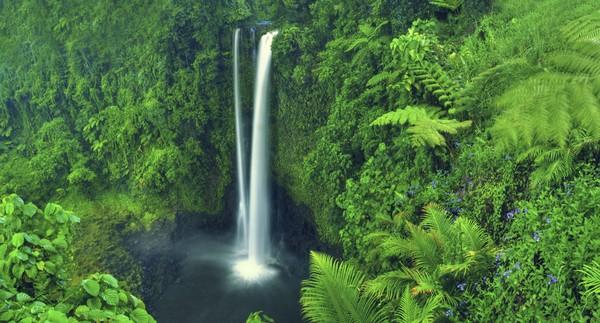 Walau terkesan kecil, negara ini memiliki potensi wisata alam yang sangat besar. Samoa terbentuk dari 9 pulau vulkanik, ini mengapa tanahnya sangat subur. (iStock)