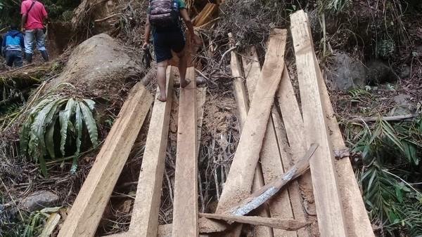Tampak dalam foto terlihat potongan kayu-kayu yang siap diangkut. Mereka meyakini jumlahnya lebih dari 1.000 kubik, bukan 100 kubik seperti yang disita polisi. (dok. Istimewa)