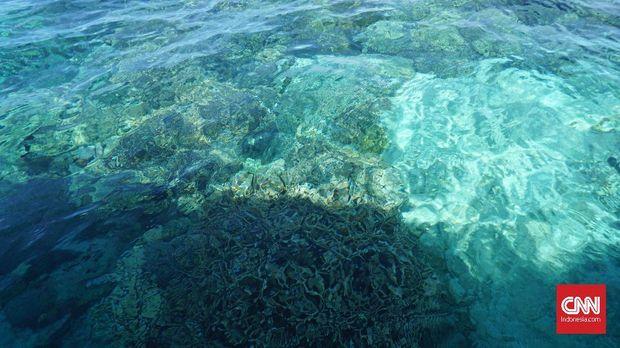 Bunaken dan Dampak Pemanasan Global yang Nyata