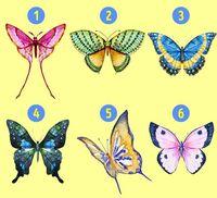 Pilih Kupu-kupu yang Menurut Kamu Paling Indah untuk Ungkap Kepribadianmu