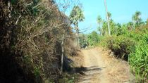 Keindahan di Balik Buruknya Infrastruktur Jalan di Lembata