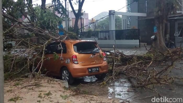Pohon tumbang menimpa mobil di Kota Padang, Jumat (9/8/2019) Foto: Jeka Kampai-detikcom