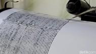 Gempa M 4,9 Terjadi di Pidie Jaya Aceh, Tak Berpotensi Tsunami