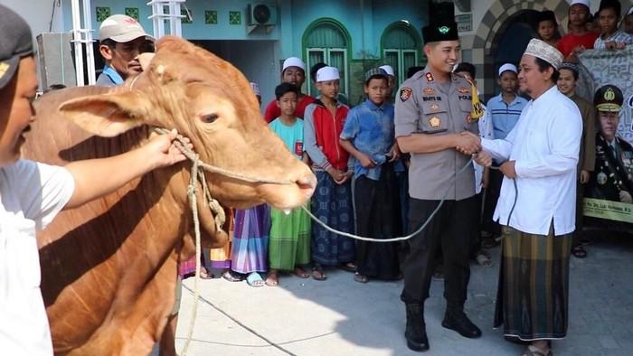Kapolda Jawa Timur Irjen Pol Luki Hermawan menyerahkan dua ekor sapi kurban untuk dua pondok pesantren di Kabupaten Gresik. Yakni Ponpes Mambaus Sholihin Suci dan Ponpes Al Ibrohimi Manyarejo Kecamatan Manyar, Gresik.