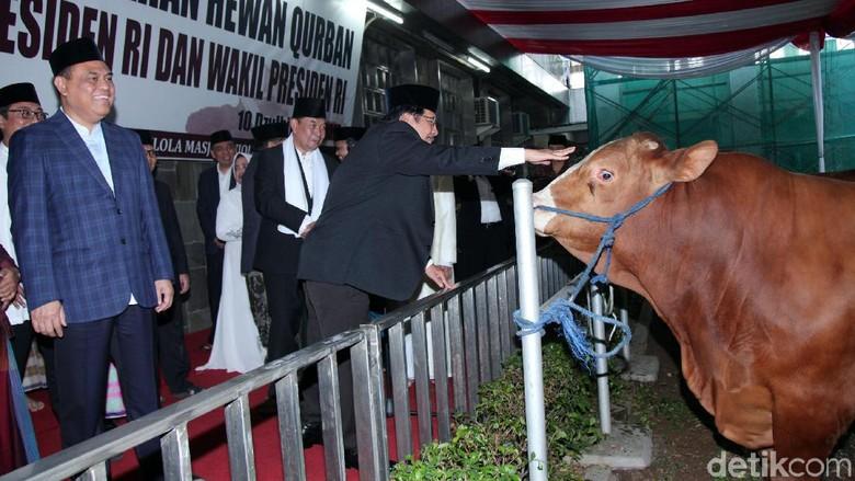 Masjid Istiqlal Serahkan Distribusi Daging Kurban ke Yayasan