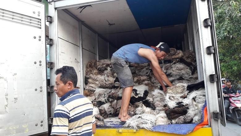 Menengok Pengepul Kulit Hewan Kurban di Bekasi yang Eksis Sejak 1997