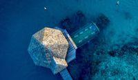 Serasa Dunia Aquaman, Makan di Restoran Bawah Laut Maldives