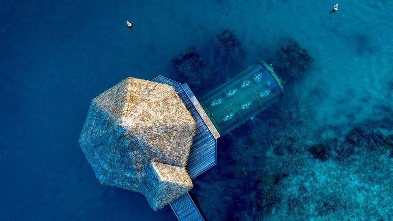 Liburan ke Maldives, kamu harus coba makan di restoran bawah laut bernama Ithaa Undersea Restaurant di Pulau Rengali. (Conrad Maldives Rangali Island)