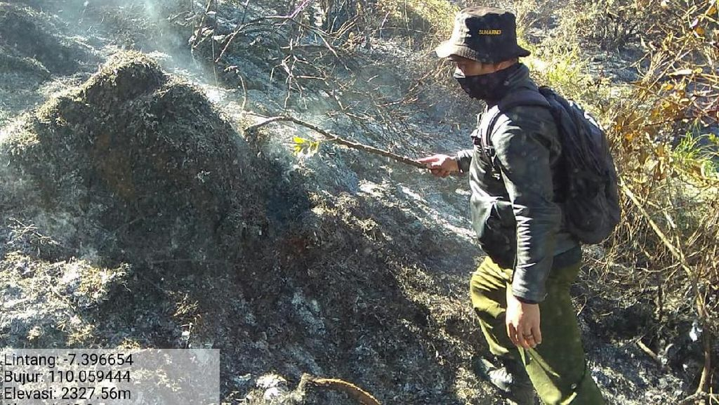Ada Kebakaran Hutan, Jalur Pendakian Gunung Sumbing Ditutup