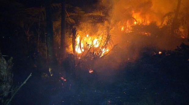 Kebakaran 2 hektare lahan di Banjarnegara.