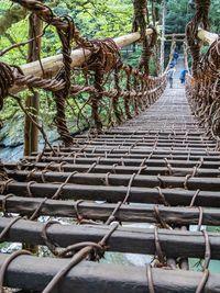 Uniknya Jepang Punya Jembatan Tradisional dari Tanaman Anggur