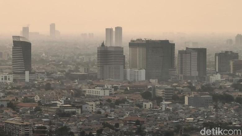 Tekan Polusi, BMKG Sarankan DKI Atur Transportasi dan Buat Hutan Kota