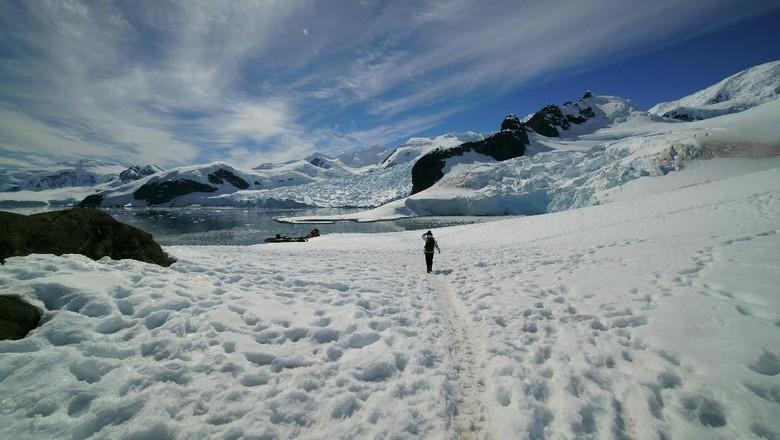 Gurun Antartika (iStock)