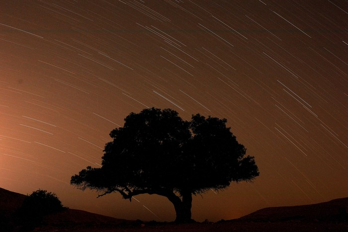 Ilustrasi hujan meteor. Foto: REUTERS/Amir Cohen