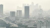 Mau Udara Sehat? Pemprov DKI Harus Berani Larang Kendaraan Beremisi