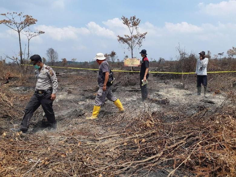 Satgas Karhutla Sumsel Duga Kebakaran Hutan Disengaja, 4 Pelaku Ditangkap