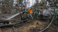 Satgas Karhutla Riau melakukan pemadaman bara api di lahan gambut di Kabupaten Pelalawan, Riau. Antara FotoRony Muharrman.