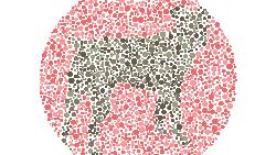 Orang dengan penglihatan normal harusnya bisa menebak siluet yang tersembunyi dengan mudah. Kalau tes ini terasa sulit, tidak ada salahnya cek ke dokter mata.