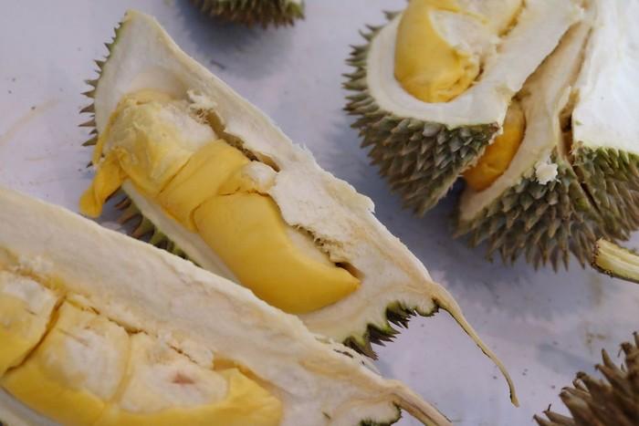 Foto ilustrasi durian: Istimewa