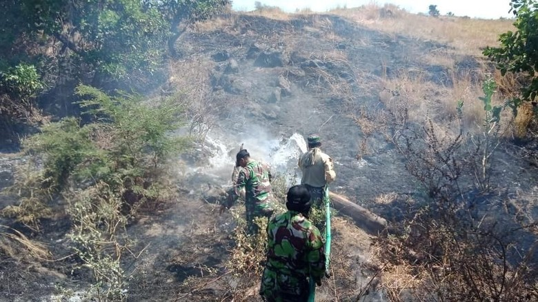 Kebakaran hutan di Geopark Tambora (dok: Kodim Bima/istimewa)