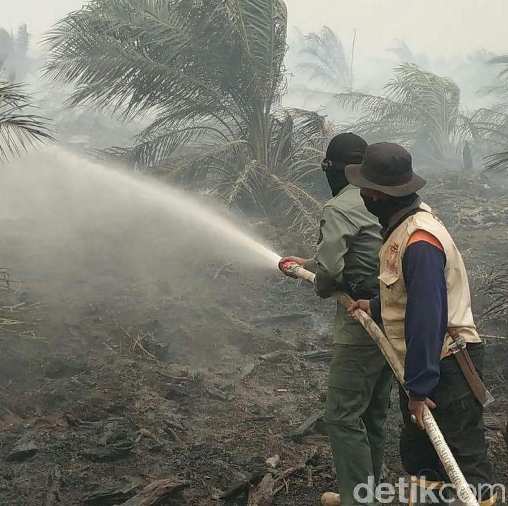 Sudah 1 Minggu, Kebakaran Lahan di Muba Sumsel Belum Padam