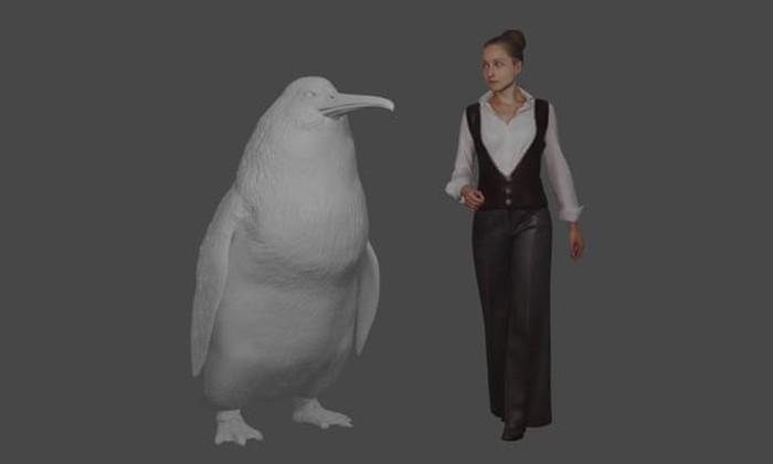Penguin raksasa setara manusia. Foto: Canterbury Museum