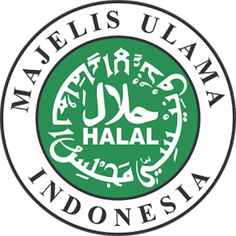 MUI Ingin Rebut Kembali Otoritas Sertifikasi Halal, Ini Kata Kemenag