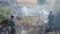 Kebakaran Lahan di Sumbawa Disebut Karena Alih Fungsi Lahan