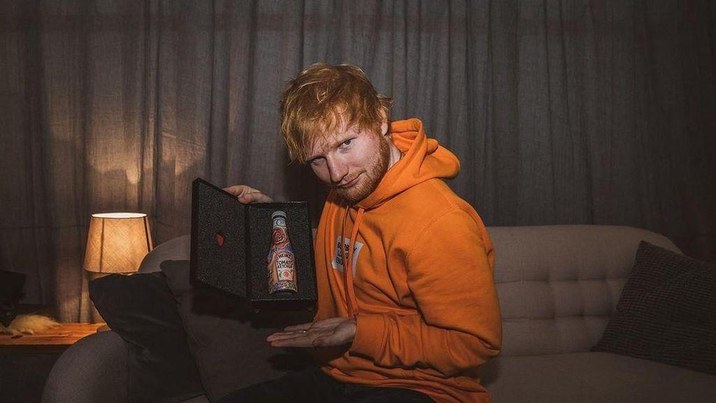 Ternyata Frank Sheeran The Irishman Saudara Ed Sheeran Beneran