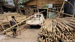 Jelang HUT RI, Perajin Pohon Pinang Banjir Rezeki