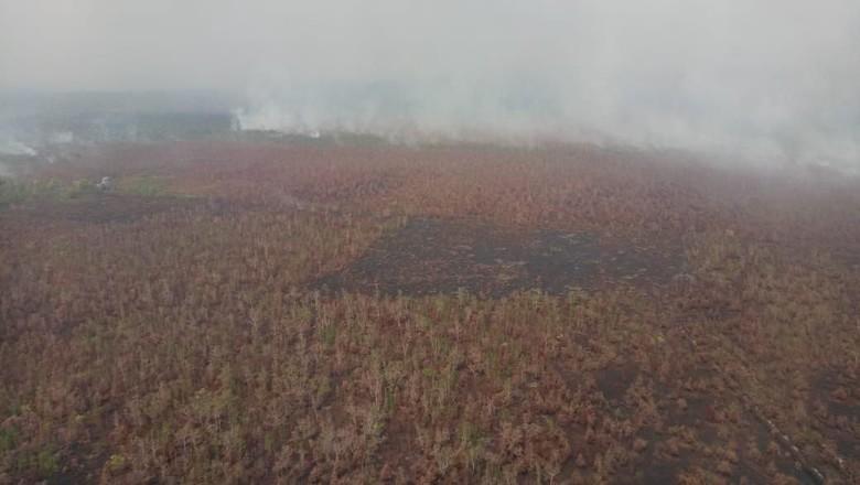 49 Titik Panas Karhutla Terdeteksi di Kalimantan Tengah