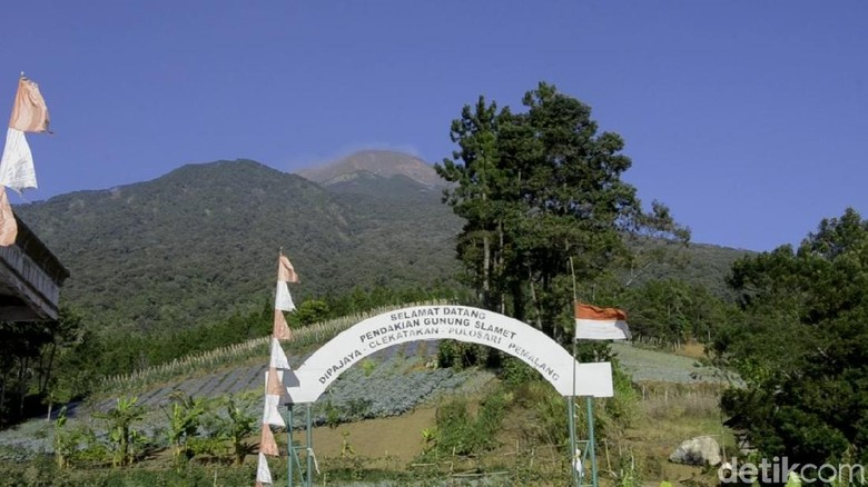 Jalur pendakian Gunung Slamet, Dipajaya, Pemalang, Jumat (16/8/2019).