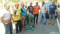 Judi di Hari Kemerdekaan, Tiga ASN di Situbondo Diamankan