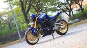Honda CBR250R Gaya Street Fighter