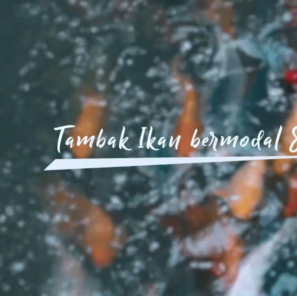 Dekat dari Jakarta. Selokan ini Dipenuhi Ikan-ikan Gemuk