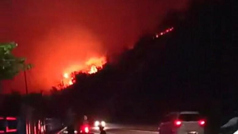 Bukit Pandanan Lombok Utara Terbakar