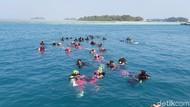 Mau Diving di Pulau Seribu? Ini Aturan Terbaru di Masa Transisi