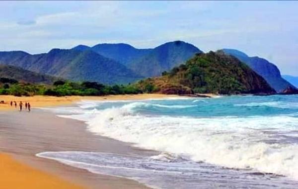 Melihat lumba-lumba bermain, melompat dan berkejaran langsung di laut memang seru. Kalau liburan ke Bima, NTB, kamu bisa mencobanya di Pantai Wane. (dok. Pokdarwis La-Bibano Wane)