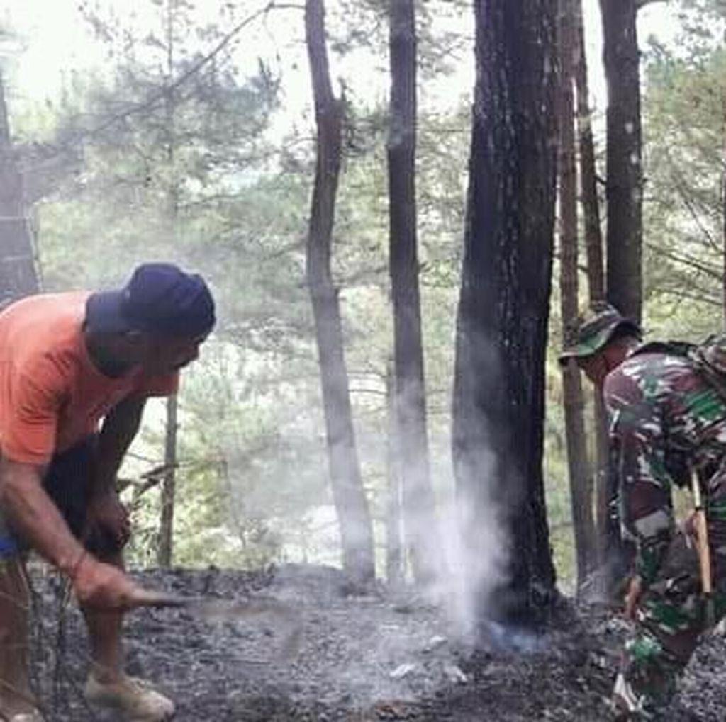 Dua Kebakaran Hutan Terjadi di Trenggalek dalam Sehari