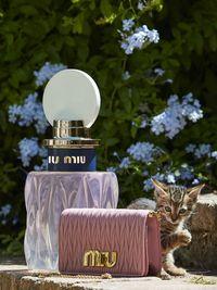 Rekomendasi Parfum Sesuai dengan Destinasi Liburan Impian Kamu